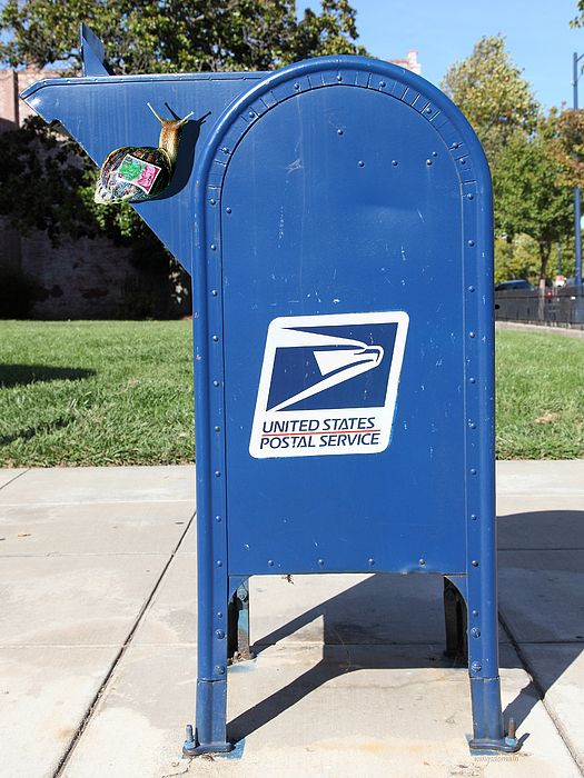 United States Postal Service mailbox with a large snail on it with a stamp on its back