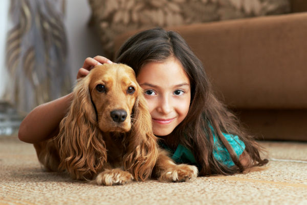 Bob's Advice for Kid who Wants a Dog