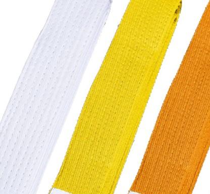 karate belts hang in Makoto's room