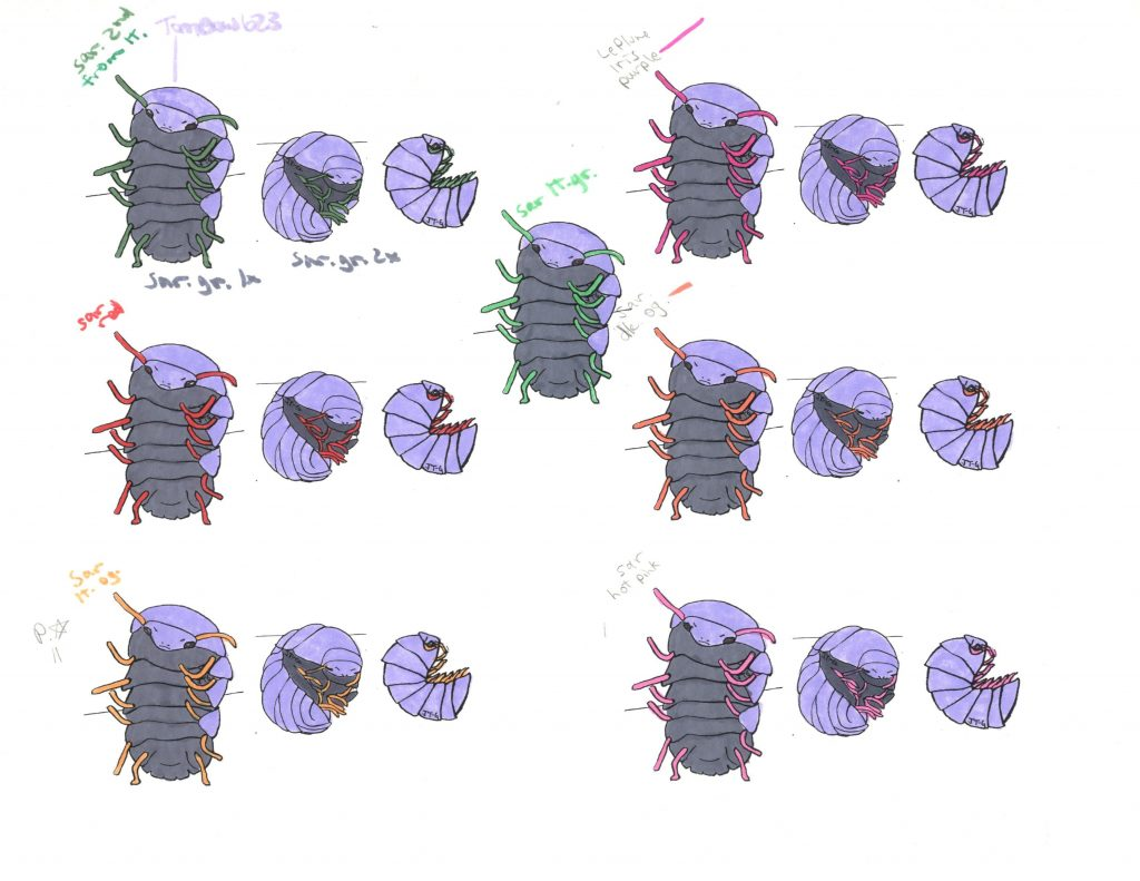 second sheet of Quitting monster illustration color tests