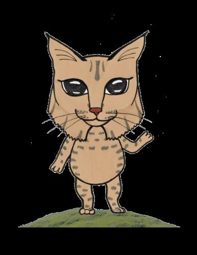 bob cat advice columnist